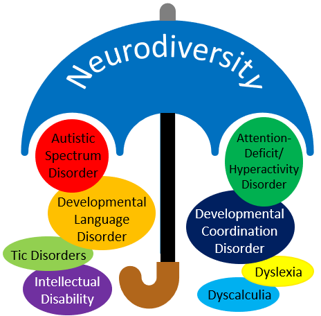 Umbrella showing what neurodiversity encompasses: Autism spectrum disorder, developmental language disorder, tic disorders, intellectual disability, attention deficit hyperactivity disorder, developmental coordination disorder, dyslexia, dyscalculia.